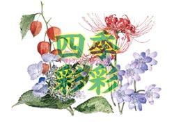 杉本俊夫2011新作